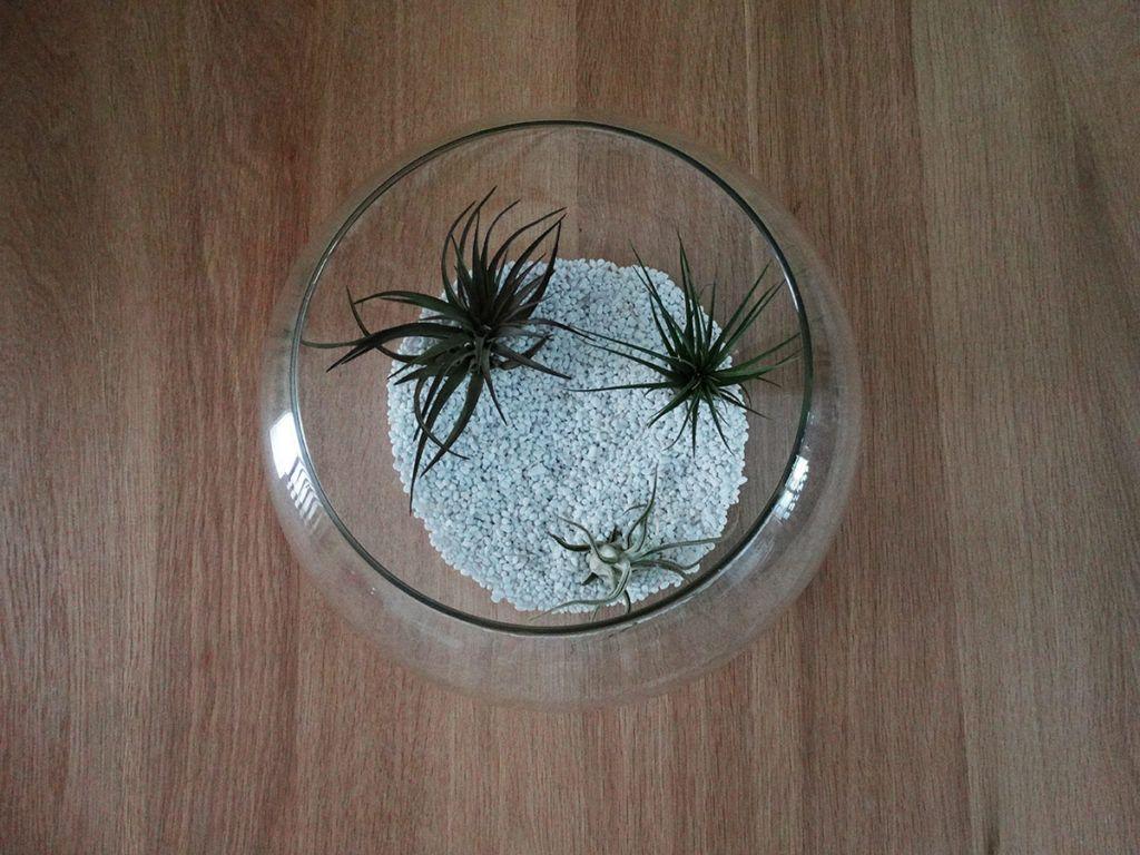 Dekoracija v stekleni bučki