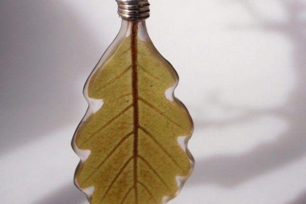 Mojca Bravničar: Drobce minljive narave ohrani v umetni smoli