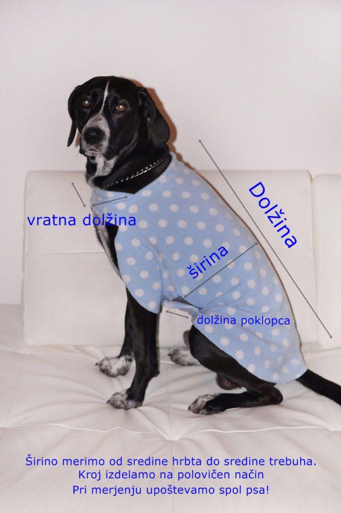 Kako izmerimo psa?