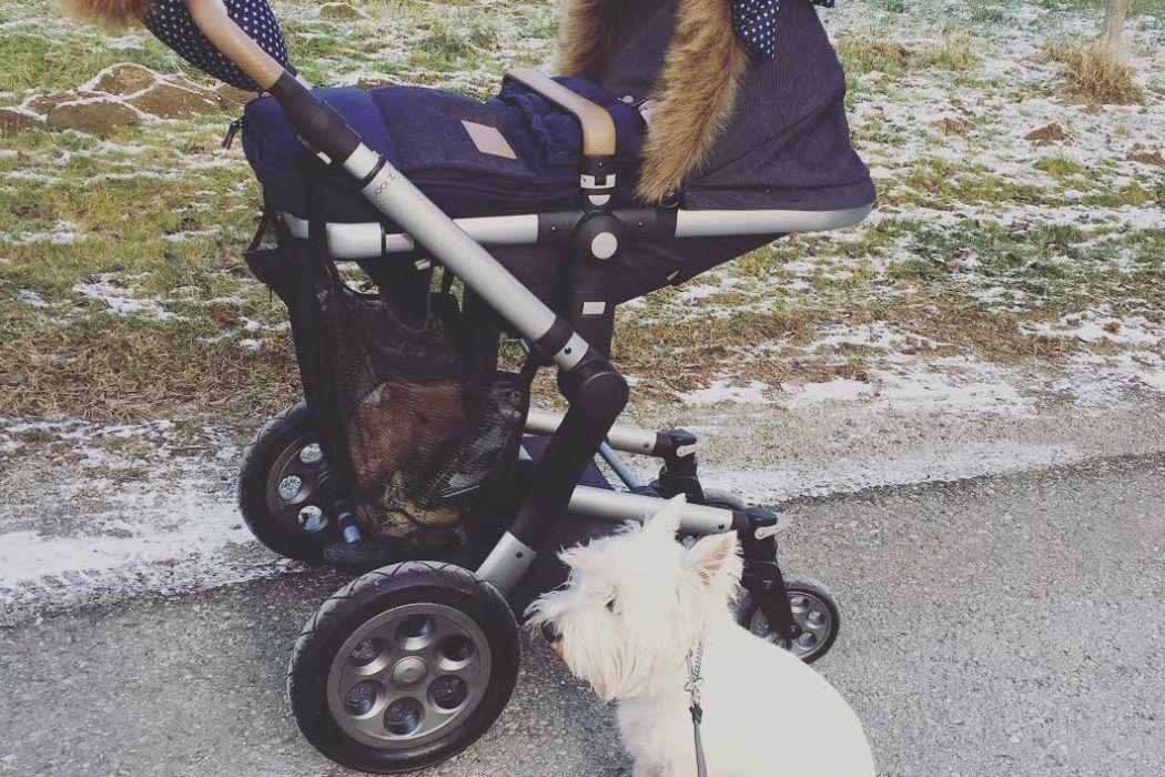 'Spimpaj' otroški voziček