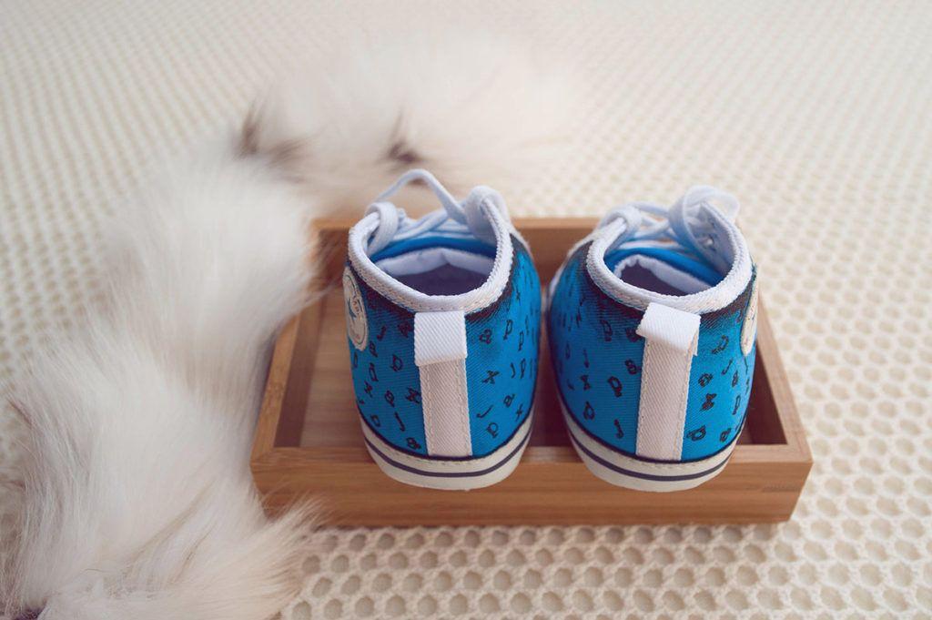 Otroški čeveljčki z unikatno podobo